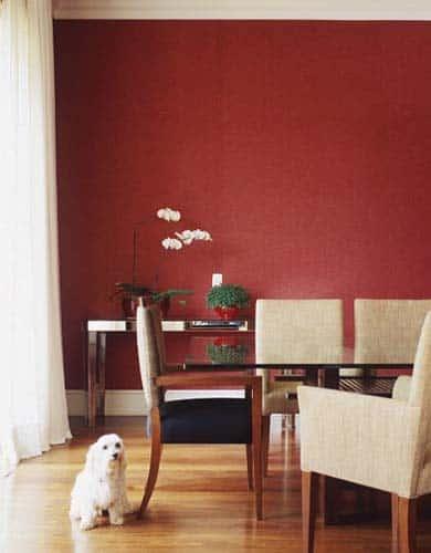 Dicas pra pintar paredes coloridas com cores vivas!
