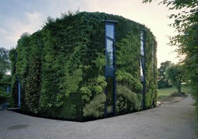Uma casa revestida de plantas