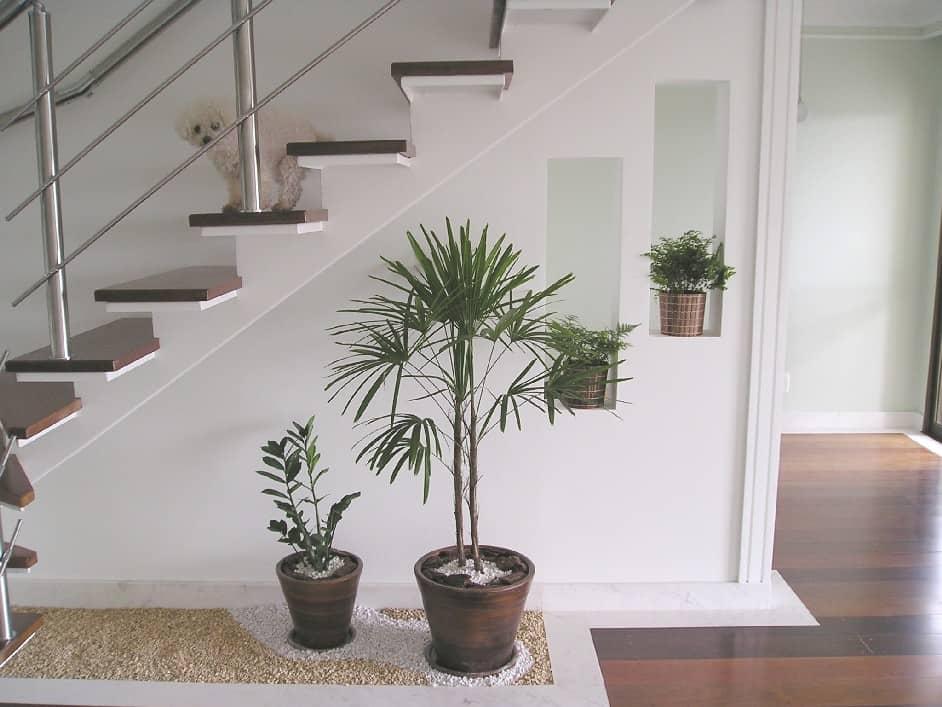 escada de pedra no jardim:Ideias para jardins embaixo da escada