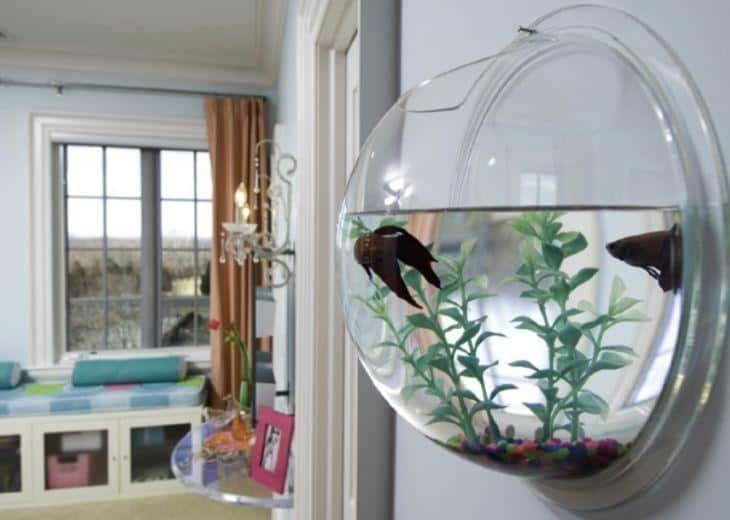 aquario de parede decoracao