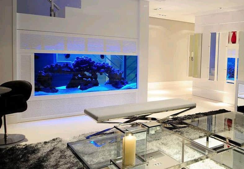 sala clean com aquario grande