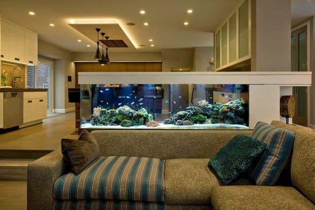 sala elegante com aquario
