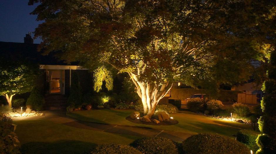 iluminacao nas arvores da casa