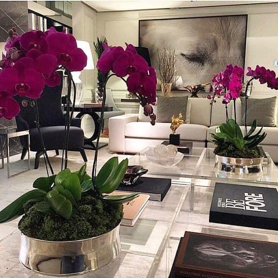 Orquídeas lindíssimas em decoração preto e branco