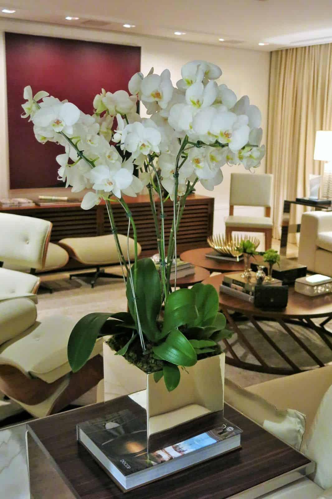 Grande vaso com várias orquídeas brancas na mesa lateral da sala.
