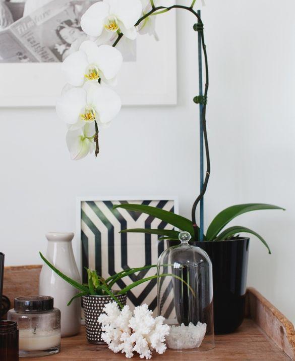 Vaso de orquídea branca na mesa lateral com vários objetos de decoração em preto e branco. Luxo total!