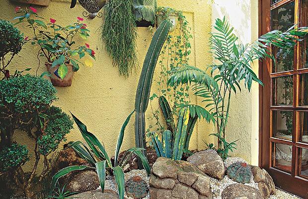 como ter plantas no jardim de inverno