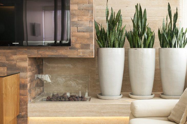 como ter plantas no apartamento