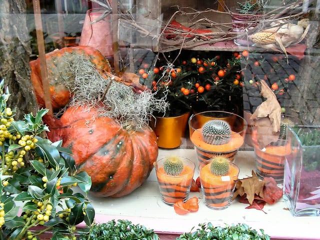 decoracao de dia das bruxas para vitrine